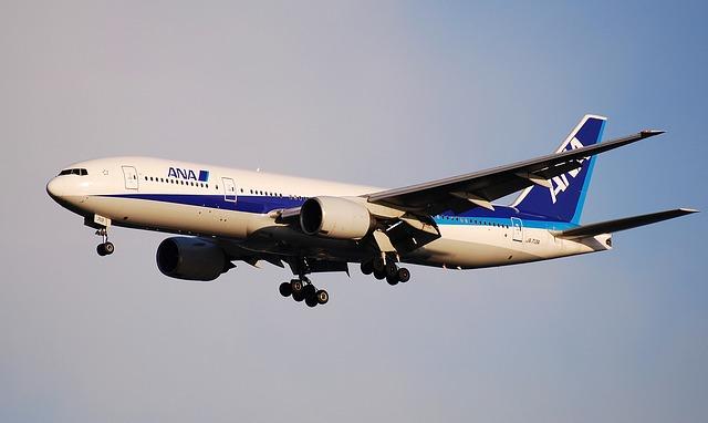 ANA(9202)の株主優待は飛行機チケット50%OFF